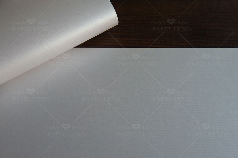 Papel Astrosilver Cannete A4 220gm - Unidade